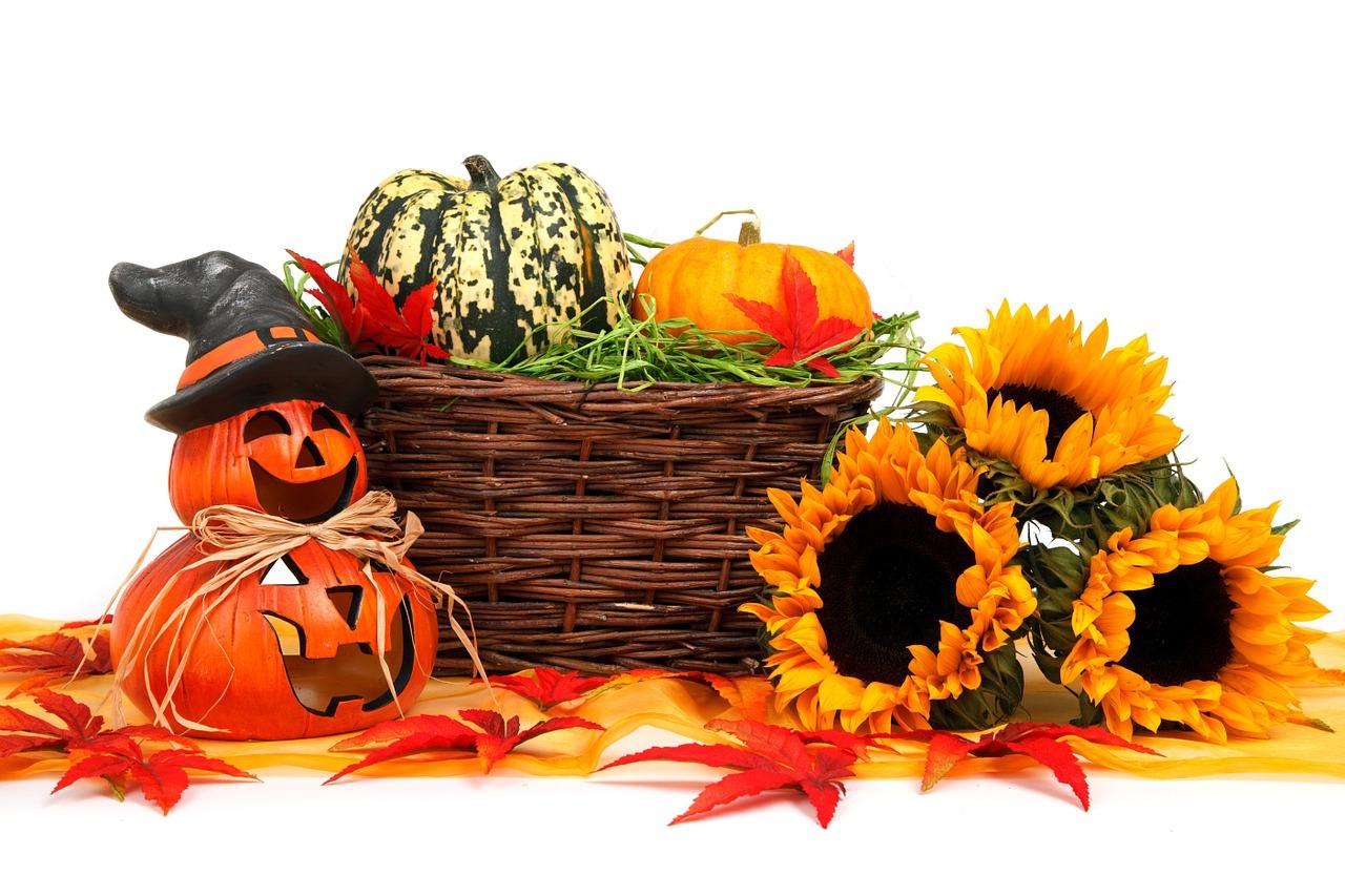 autumn-2862_1280