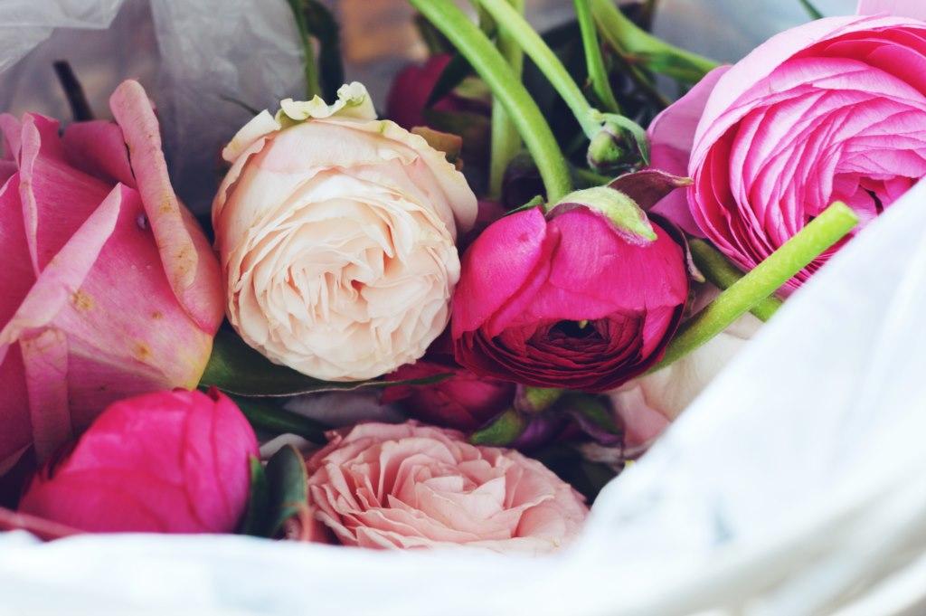 gretaflowers - KÓRNIK - IDEALNE MIEJSCE DAMSKICH SPOTKAŃ #BLOGODAMY 2017 cz. 1