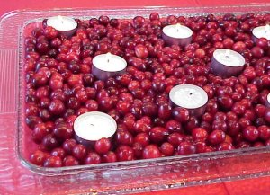 Cranberry Beauty