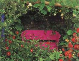 opt-pink-bench-garden-zinni.jpg