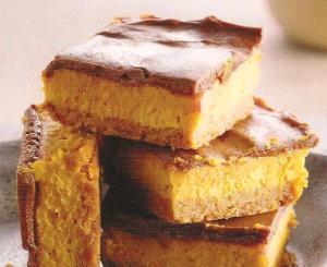 pumpkin chocolate cheesecake 001