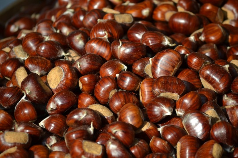 chestnuts-1400592_960_720