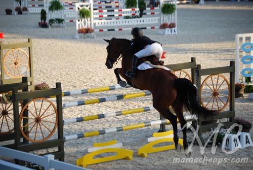 devon horse show 2011 c