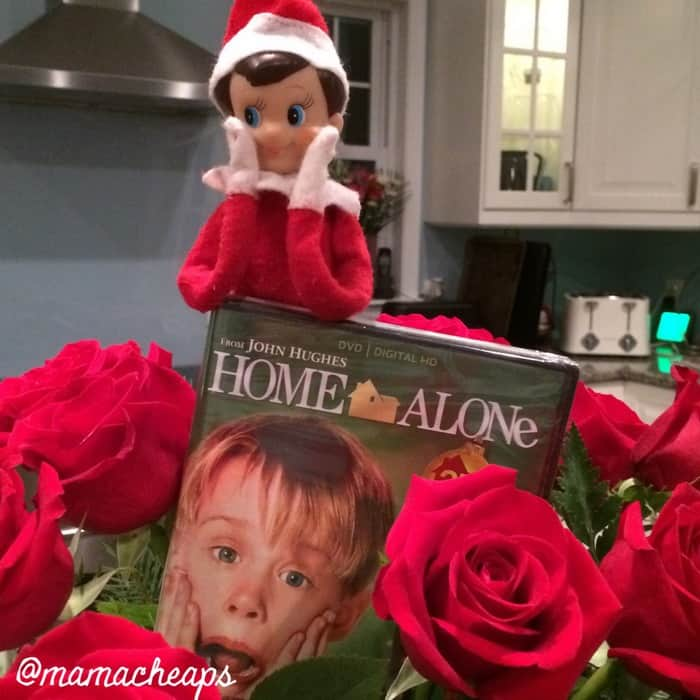 Elf Brings Home Alone
