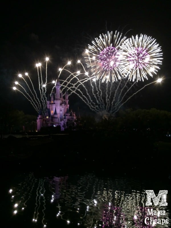 disney world fireworks dessert party