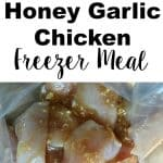 Garlic Honey Chicken Freezer Meal Recipe