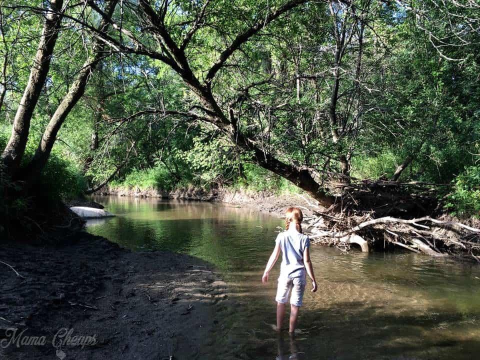 Wading in Plum Creek