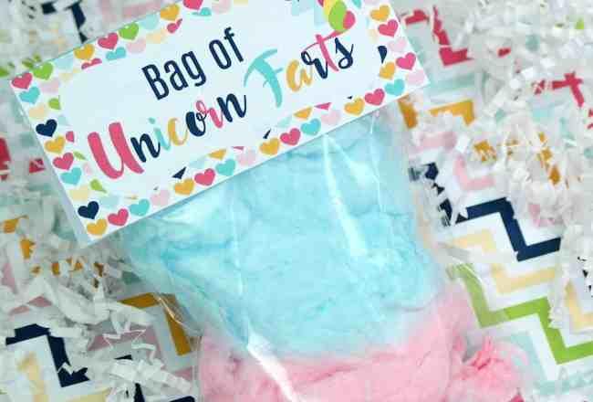 Bag Unicorn Farts
