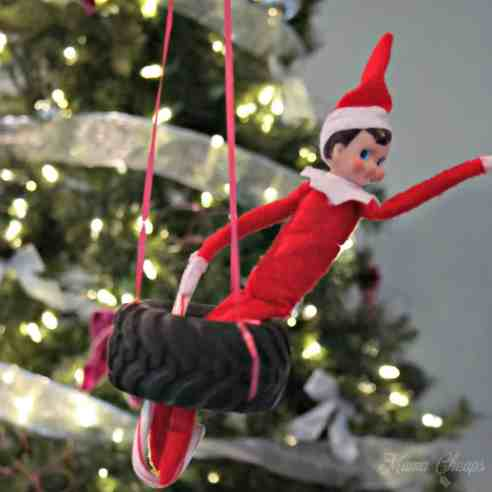 Elf Shelf Tire Swing