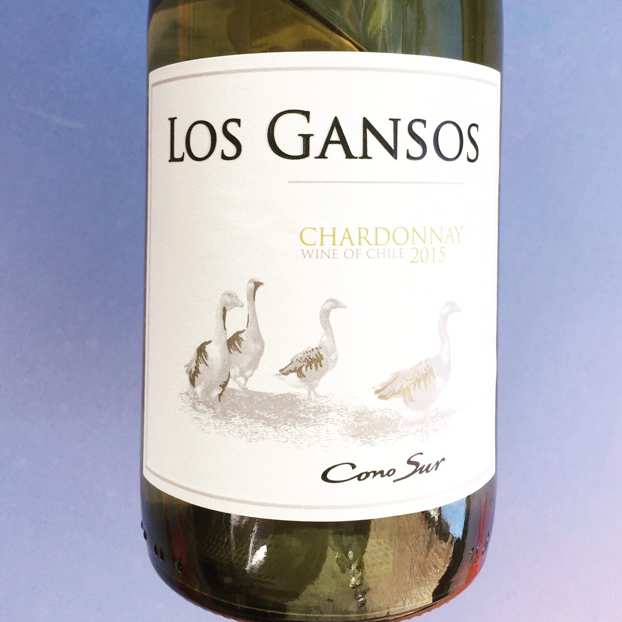 Chardonnay Los Gansos, Chili Review