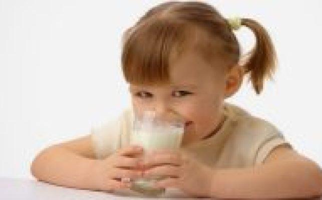 cachorro-pode-beber-leite