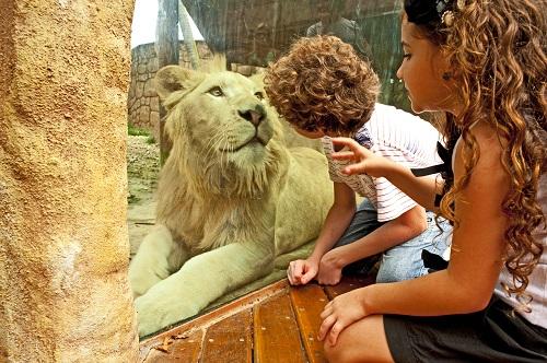 Zoo no Beto Carreiro World