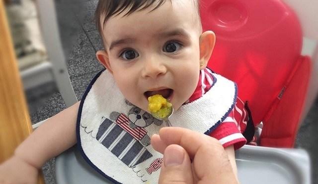 Introdução alimentar: orientações da Sociedade Brasileira de Pediatria