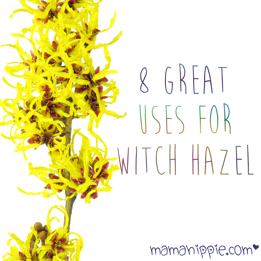 8 Great Uses for Witch Hazel