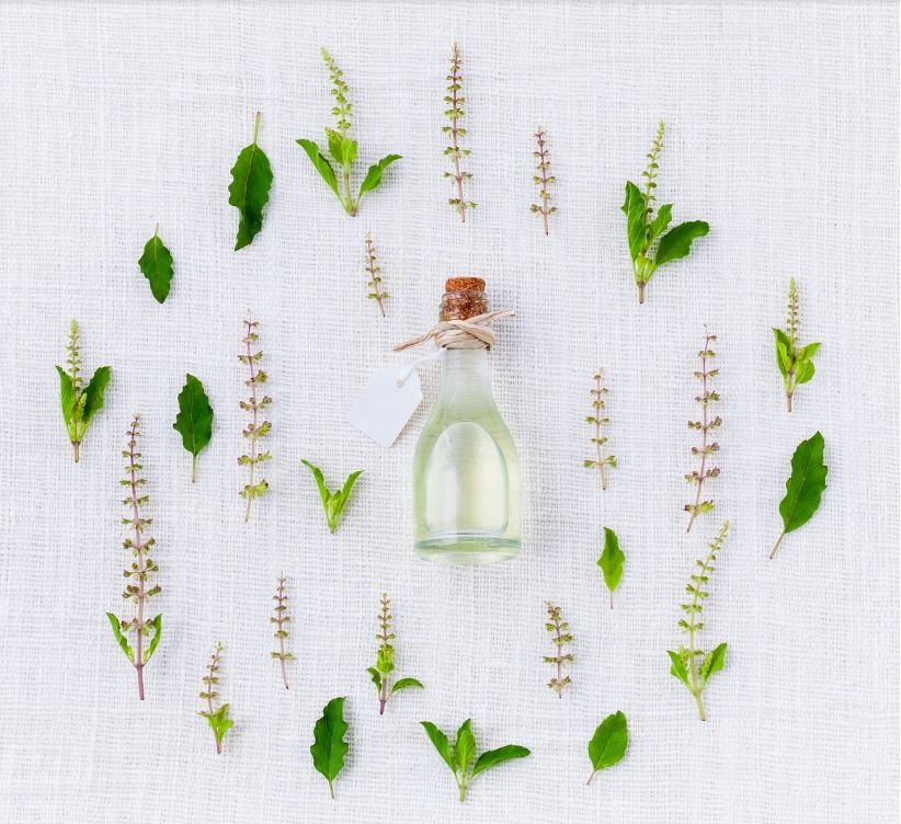 Essential Oils For Pest Control: All You Need To Know