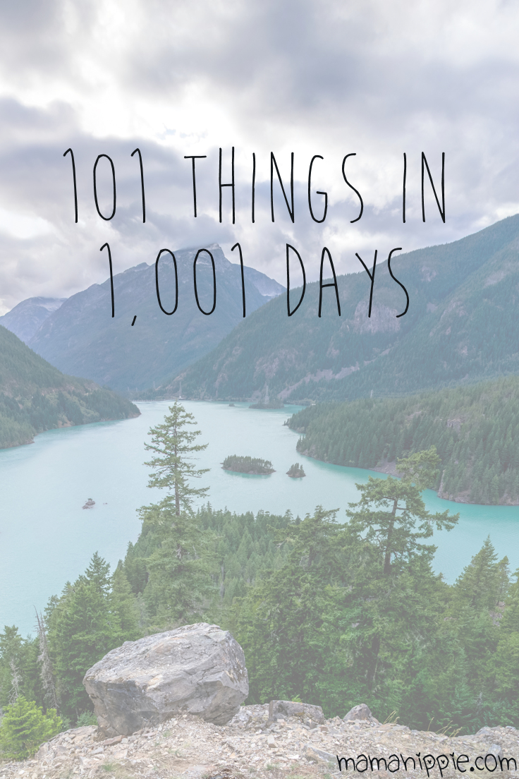 Need an alternative to setting goals or a new years resolution? Learn about the 101 in 1,0011 challenge, what goals I'm setting for myself, and how to create one for yourself.
