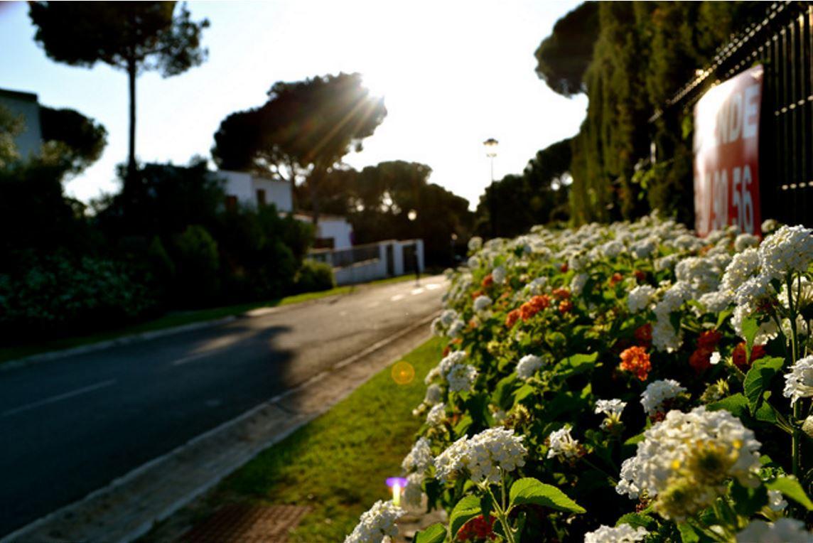 The Quickest Ways To Make Your Garden Look Amazing