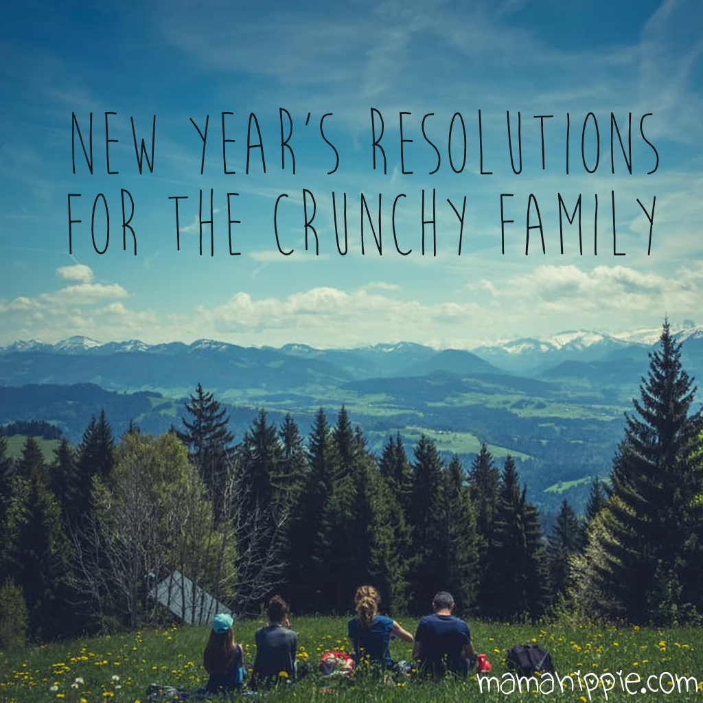New Year's Resolution Ideas for the Crunchy Family