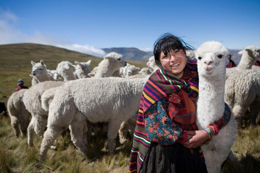 Ayuda a las Familias más Necesitadas de los Andes. Sorteo. #GiveHeifer #LBCGives