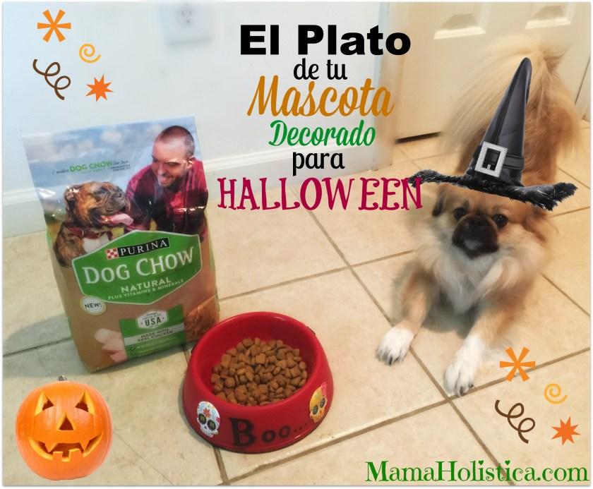 El Plato de Tu Mascota Decorado para Halloween #ThrowItBarkDogChow #ad