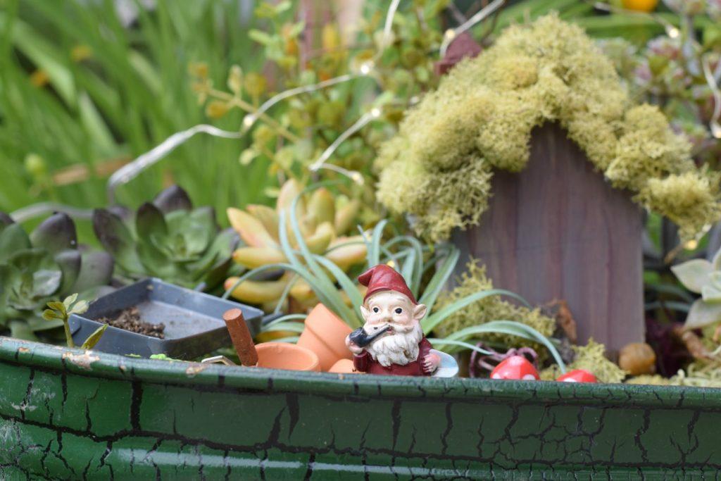 Fairy Garden How To