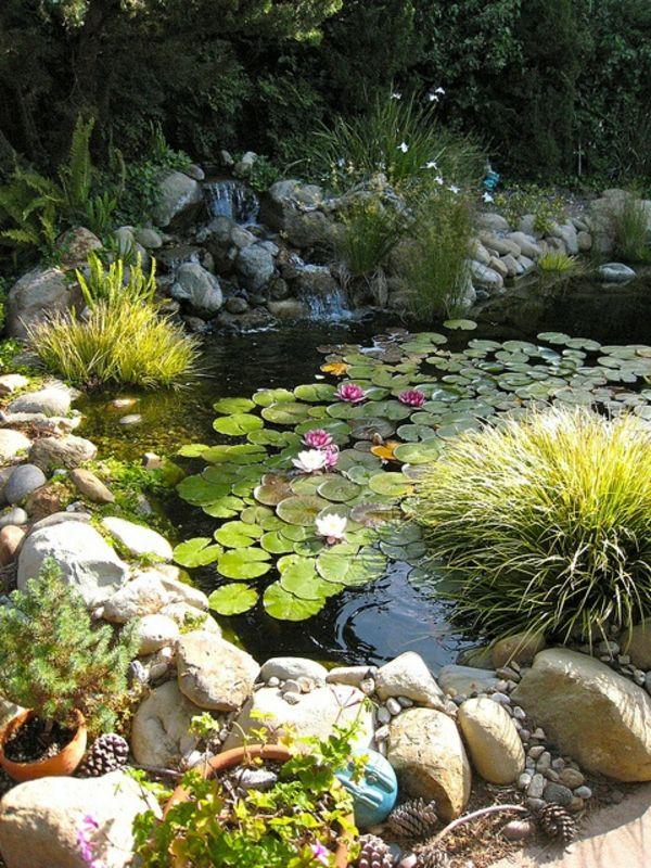 le jardin en mode poissons et bassins