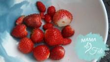 Immer noch täglich frische Erdbeeren