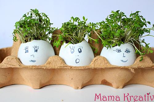 Kresse-Eier