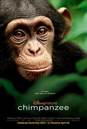 Chimpanzee en Cines!