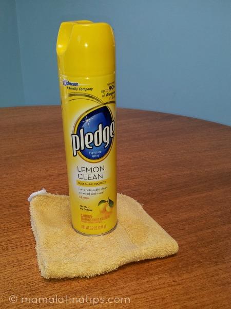¿Quién te Inspira ha Tener tu Casa Limpia y Ordenada?