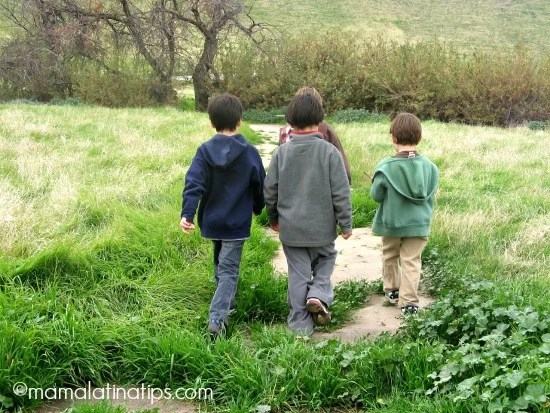 Kids and nature by mamalatinatips.com