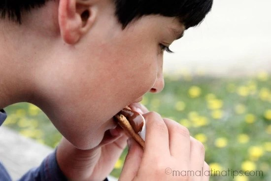 My son eating a s'more by mamalatinatips.com