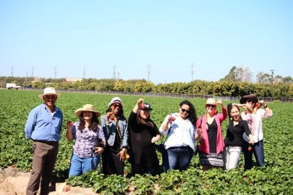 Juan Fernandez and blogges at strawberry field
