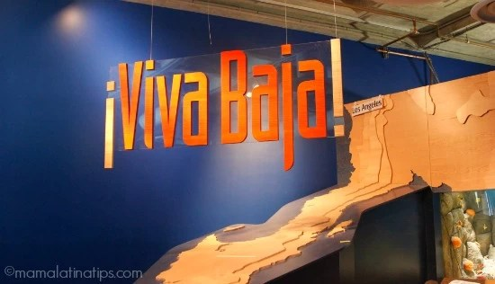 ¡Viva Baja! Exhibition at Monterrey Aquarium - mamalatinatips.com