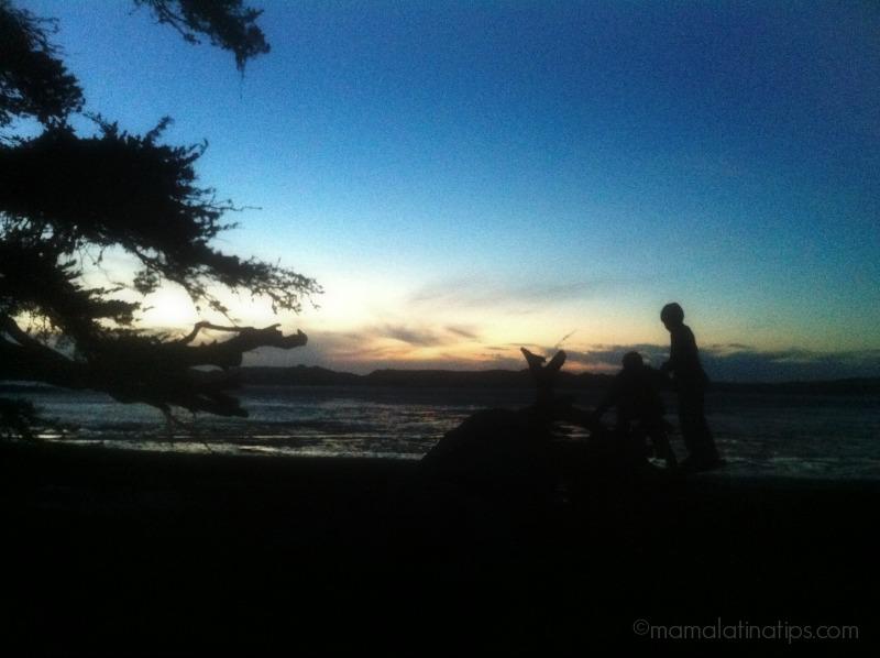 Sunset at the logs - mamalatinatips.com