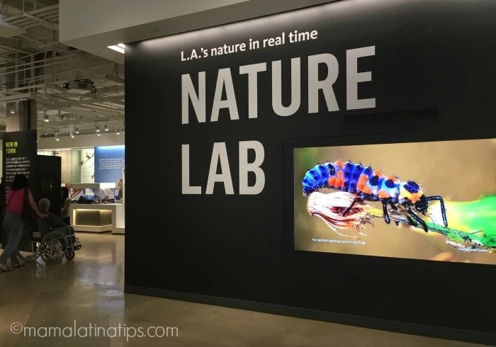Nature Lab at Natural History Museum in LA - mamalatinatips.com