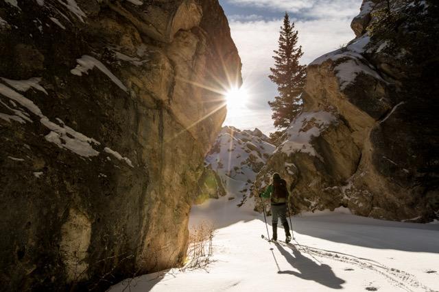 Mammoth Hot Springs in Yellowstone National Park - mamalatinatips.com