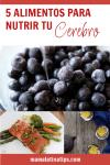 imagen de pinterest con blueberries, salmón y té verde