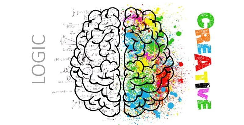 image of a brain divided in two, one side says create, the other says logic