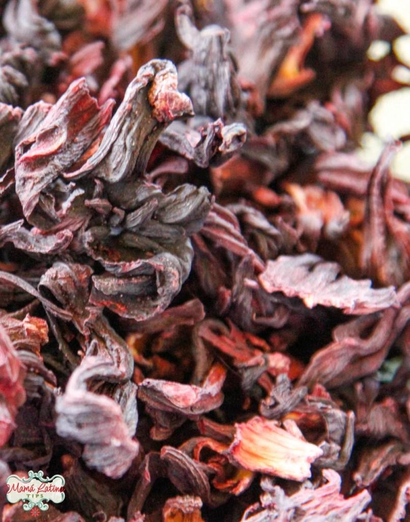 Flor de hibisco seca