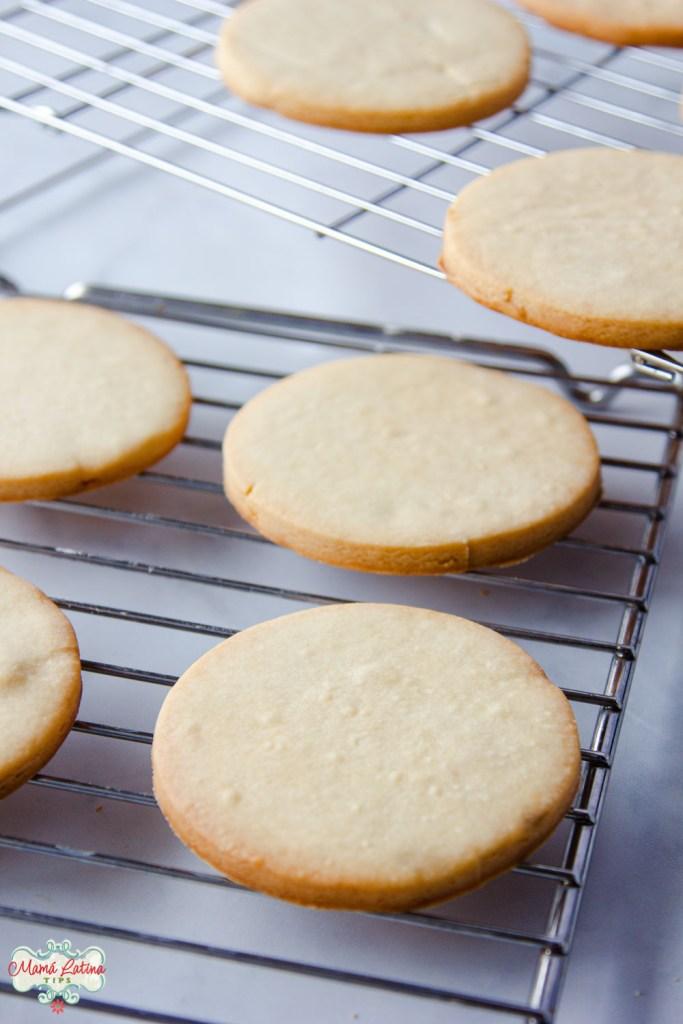 round cookies on top of racks