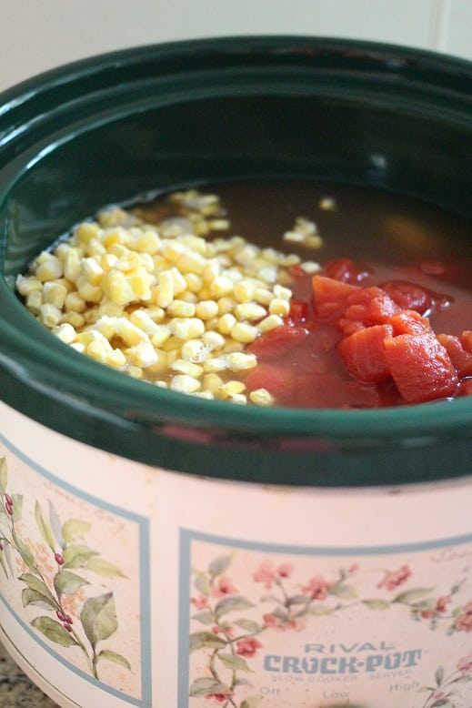 Slow Cooker Chicken Salsa Soup Recipe