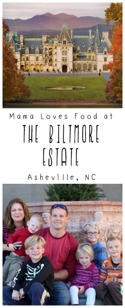 Visiting the Biltmore Estate in Asheville North Carolina