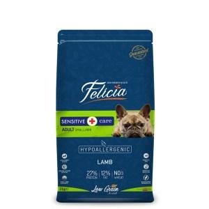 felicia-smallmedium-breed-kuzulu-kopek