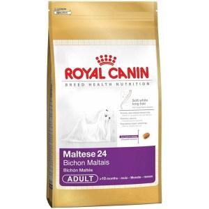 royal-canin-maltese-bichon-maltais-yetiskin-