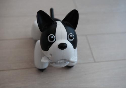 Robot chien Duke