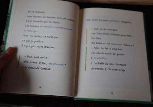 """Roman """"Le buveur d'encre"""" adapté DYS"""