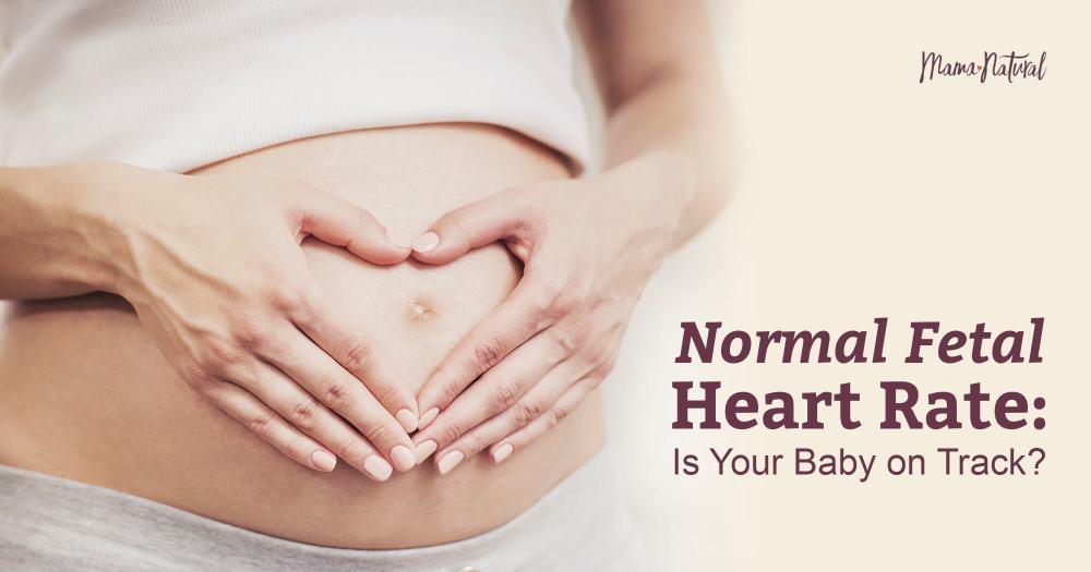 medium resolution of 14 week pregnant belly diagram