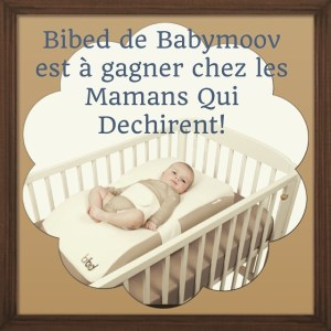 C'est parti pour 10 jours de super #Concours chez les #mamansquidechirent ! Aujourdhui c'est le #bibed de @babymoov qui est à gagner sur le blog... Bonne chance a tous! #concours #10000fans #merci #mamansquidechirent