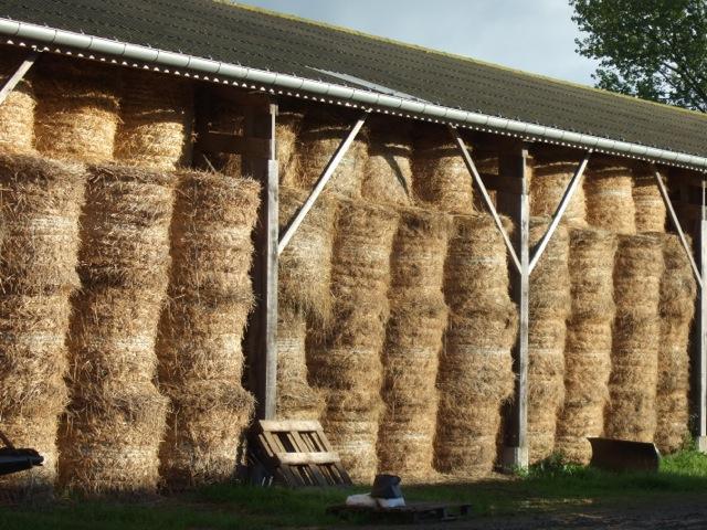 Week-end dans la Manche : séjour à la ferme